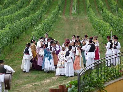 KUD Zrinski podno Zdjelarevića vinograda